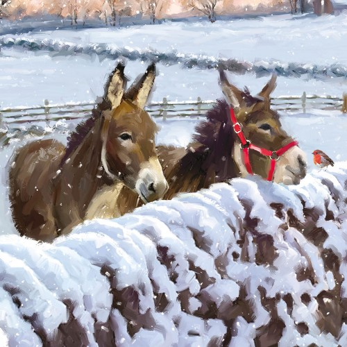 charity christmas card companions - Animal Charity Christmas Cards